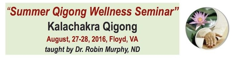 August 27-28, 2016 - Summer Qigong Wellness Seminar - Floyd, VA